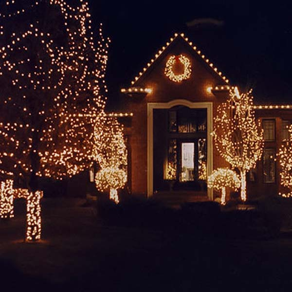 Christmas light installers in Michigan