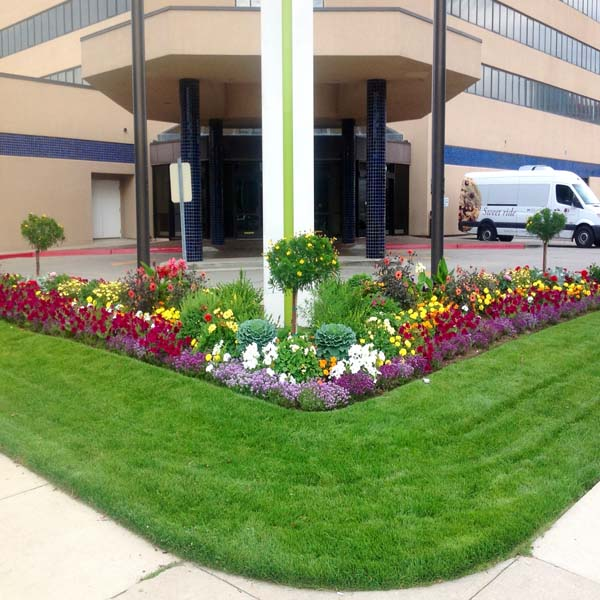 Locke's Landscaping - Commercial Landscaping Pros